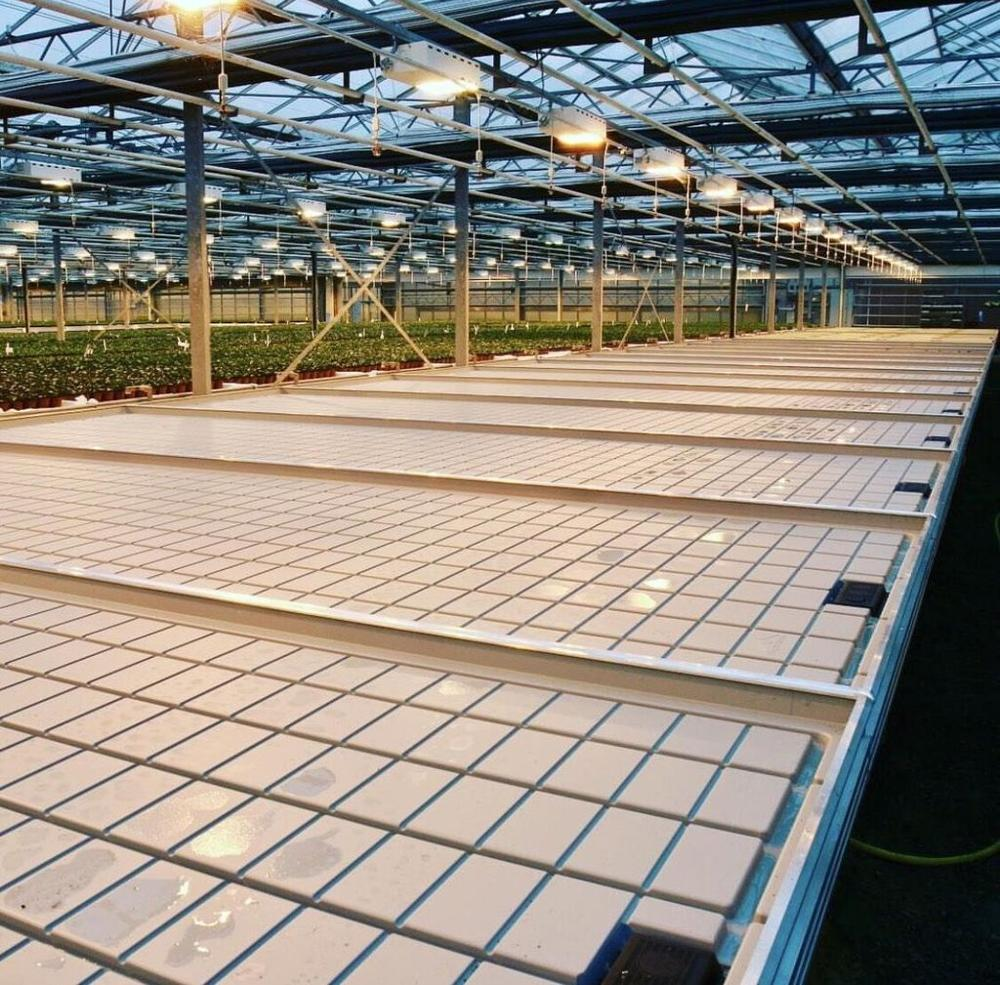 Ebb Flow Trays installed in greenhouse 2